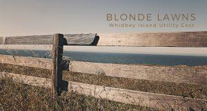 Blonde Lawns, Whidbey Island, Grass, yard, Home