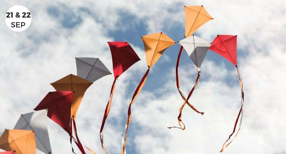 Events, Whidbey island, Local, Things to do on whidbey, whidbey island, coupeville, activities, kites