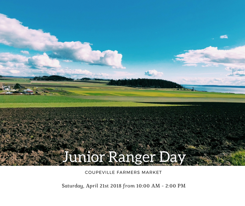 Junior Ranger Day Windermere