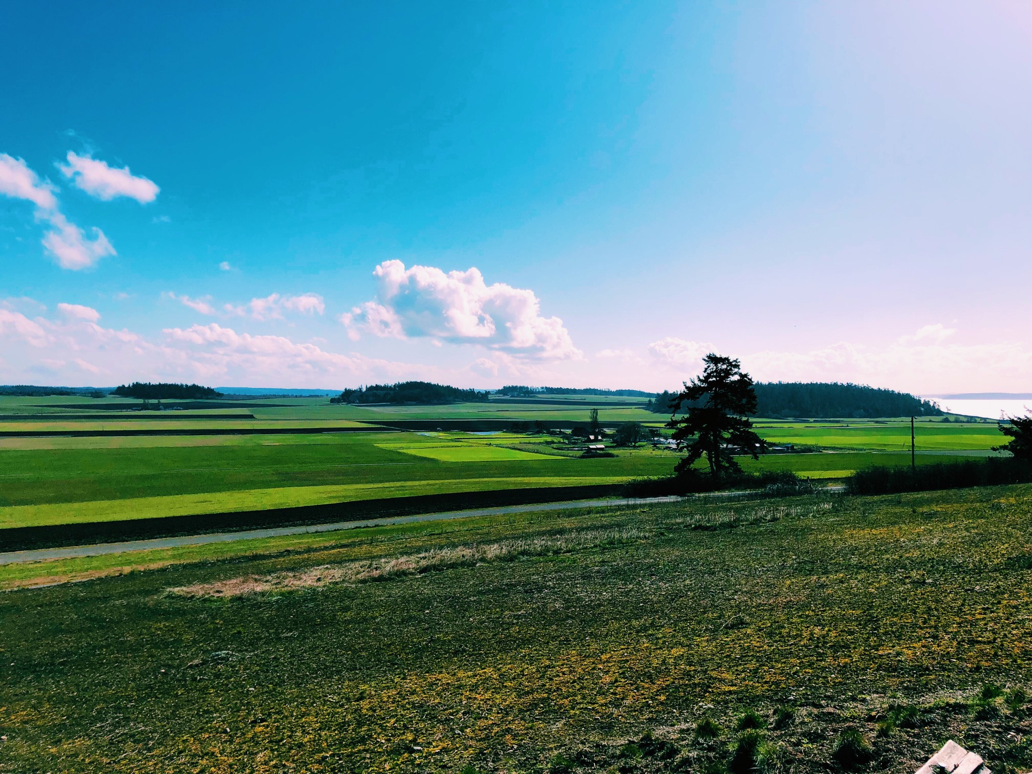 Ebey's Farmland, Windermere, Coupeville