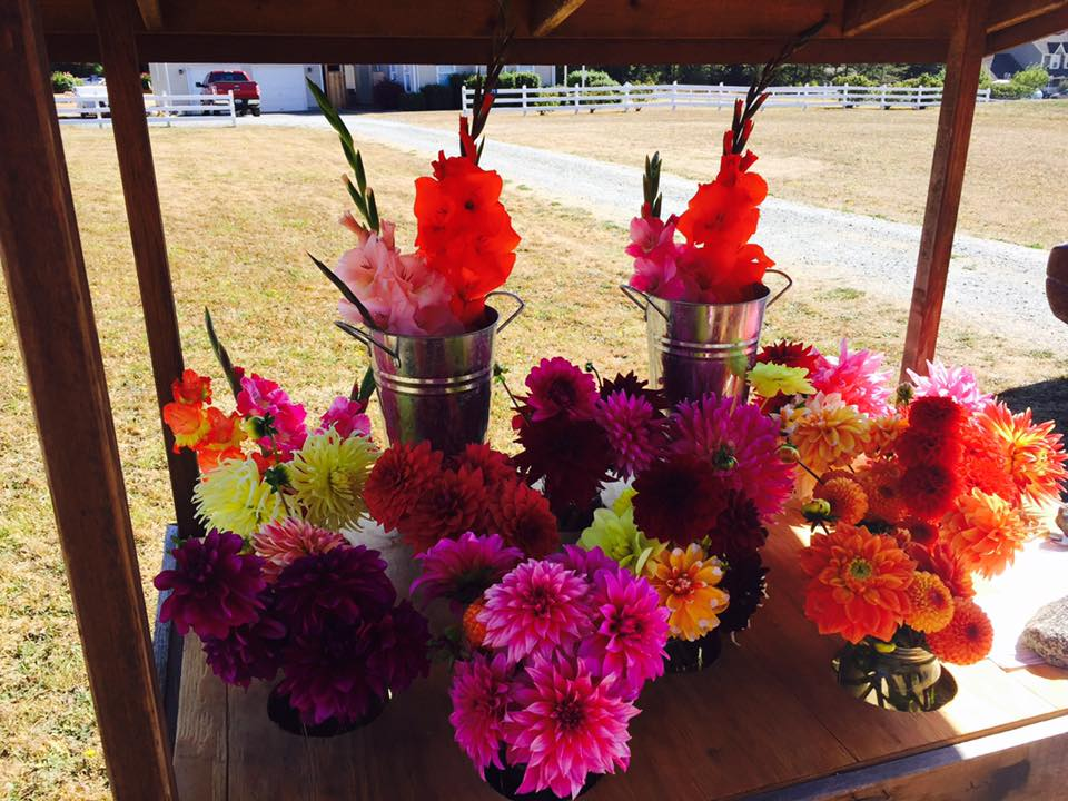 Flower Stands, Whidbey Island