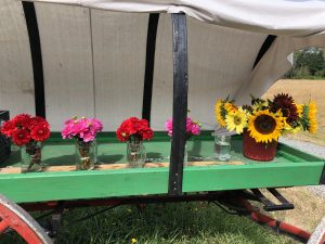 Wagon, Flowers, Flower stand, honesty stand, whidbey island