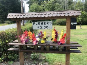 Flowers, Vase, Home grown, labor of love, neighborhood, community, whidbey Island, Oak Harbor
