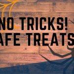 No Tricks! Safe Treats!, Oak harbor, Whidbey island, halloween , October, events, local, whidbey Island, Island life, Windermere