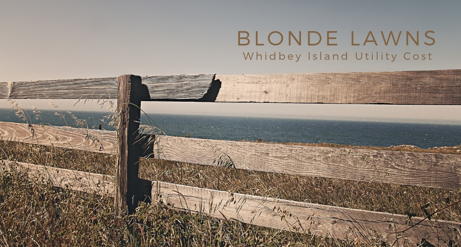 Blonde Lawns, Whidbey Island, Grass, yard, Home