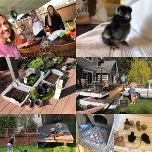 Windermom, Konni Smith, Chickens, Windermoms Quarantine Activities