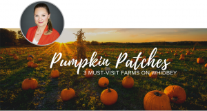 Pumpkin Patch, Where to buy Pumpkins on Whidbey