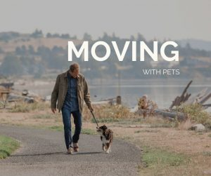 Moving With Pets, Whidbey island, Washington, Windermere, Real Estate, Man Walking Dog, Windjammer Park