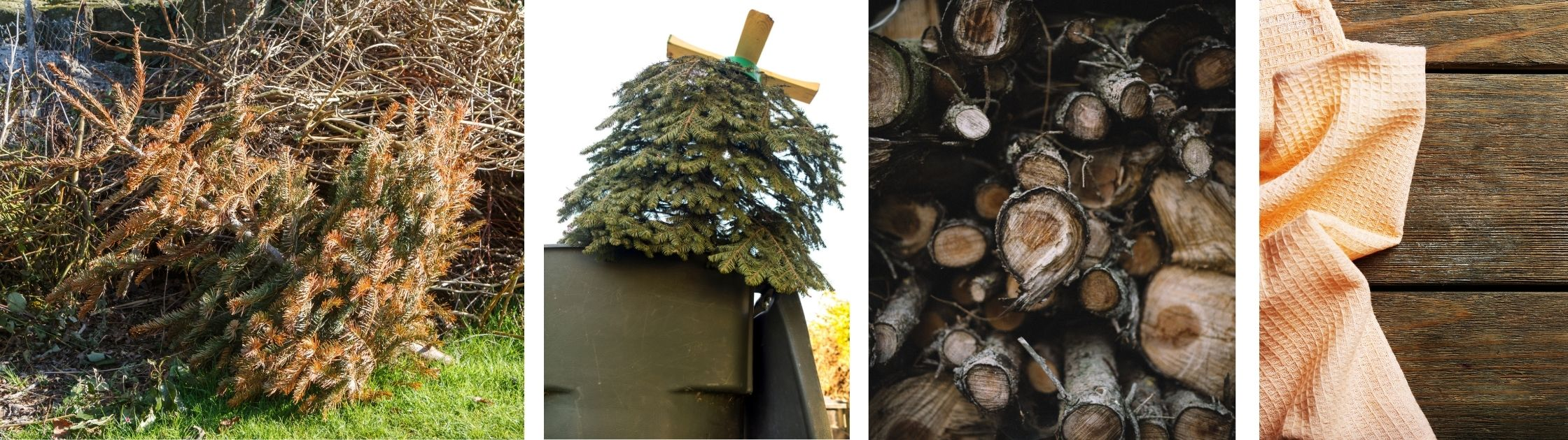 Recycle your tree, christmas is over, hold on tight, new years, windermere, what are we supposed to do now, all in for you